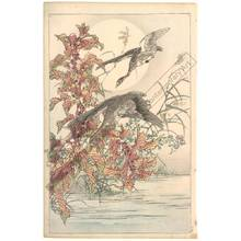 幸野楳嶺: Wild geese by full moon (title not original) - Austrian Museum of Applied Arts