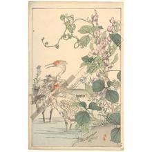 Kono Bairei: Herons (title not original) - Austrian Museum of Applied Arts