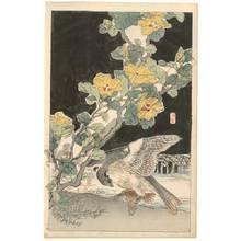 Kono Bairei: A hawk and sparrow (title not original) - Austrian Museum of Applied Arts