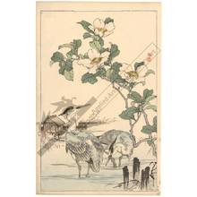 幸野楳嶺: Egrets and camellias (title not original) - Austrian Museum of Applied Arts