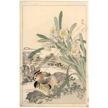 Kono Bairei: Mandarin ducks (title not original) - Austrian Museum of Applied Arts
