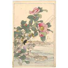 幸野楳嶺: Ducks and camellias (title not original) - Austrian Museum of Applied Arts