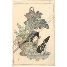 幸野楳嶺: Birds and flower arrangement (title not original) - Austrian Museum of Applied Arts