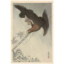 Shoson Ohara: Eagle in flight (title not original) - Austrian Museum of Applied Arts