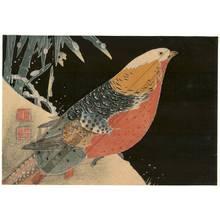 伊藤若冲: Pheasant and bamboo in winter - Austrian Museum of Applied Arts