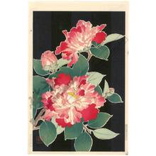 Kawarazaki Shodo: Camellia - Austrian Museum of Applied Arts