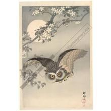 Shoson Ohara: Owl in flight (title not original) - Austrian Museum of Applied Arts