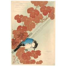 Unknown: Bird on a branch (title not original) - Austrian Museum of Applied Arts