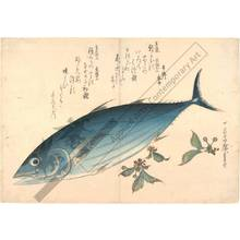 Utagawa Hiroshige: Bonito (title not original) - Austrian Museum of Applied Arts