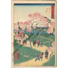 Utagawa Hiroshige III: Cherry blossoms in full bloom at Mukojima - Austrian Museum of Applied Arts