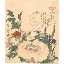 Kubo: Peony and Iris - Austrian Museum of Applied Arts