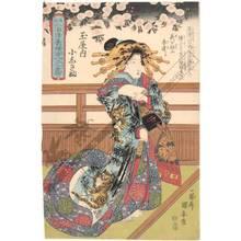 Utagawa Yasugoro: Courtesan Koshikibu from the Tama house - Austrian Museum of Applied Arts