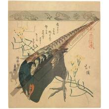 Totoya Hokkei: Pheasant (title not original) - Austrian Museum of Applied Arts