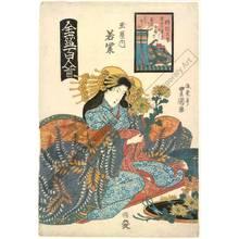 Utagawa Toyoshige: Courtesan Wakamurasaki from the Tama house - Austrian Museum of Applied Arts