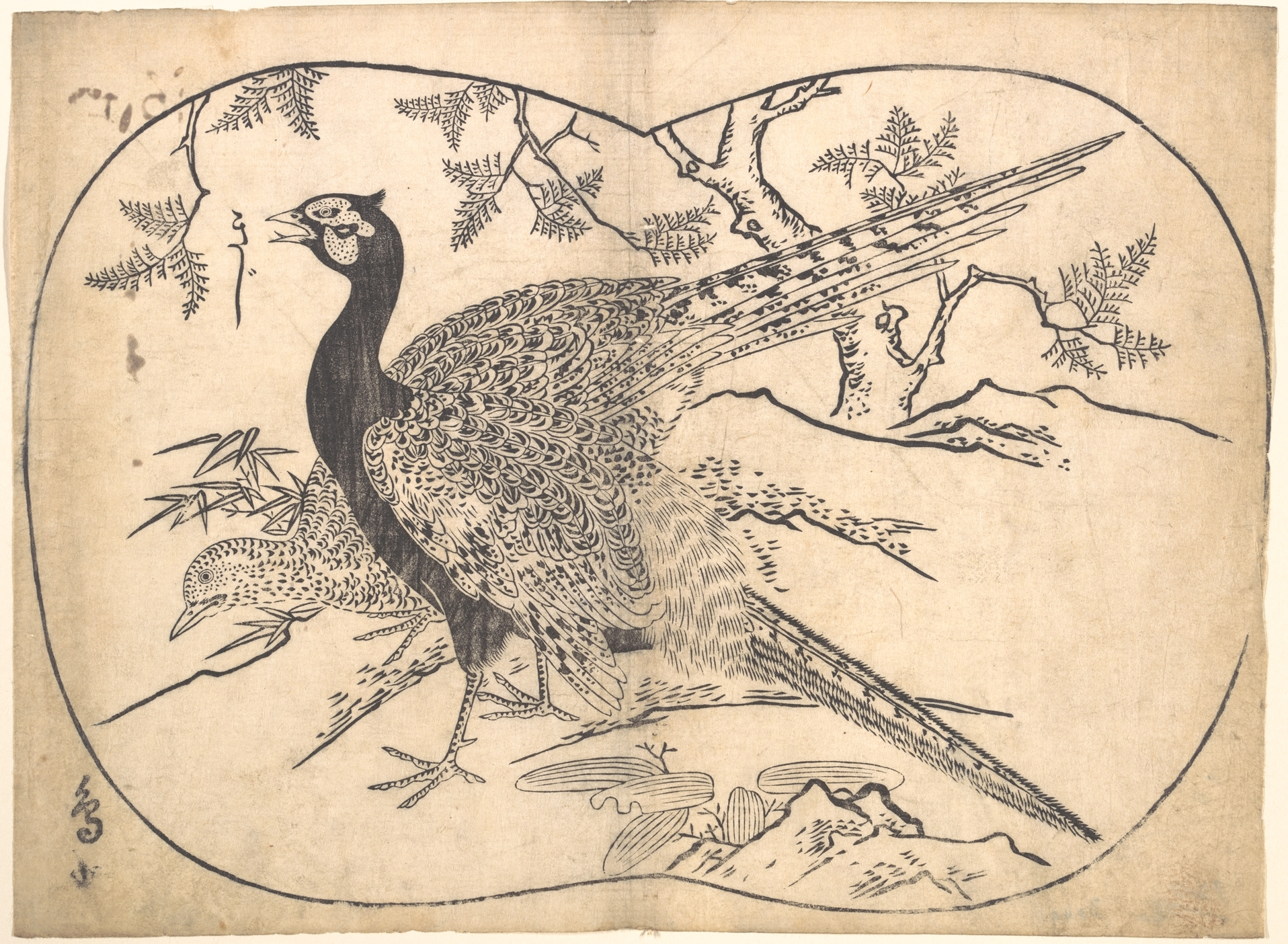 菱川師宣の画像 p1_25