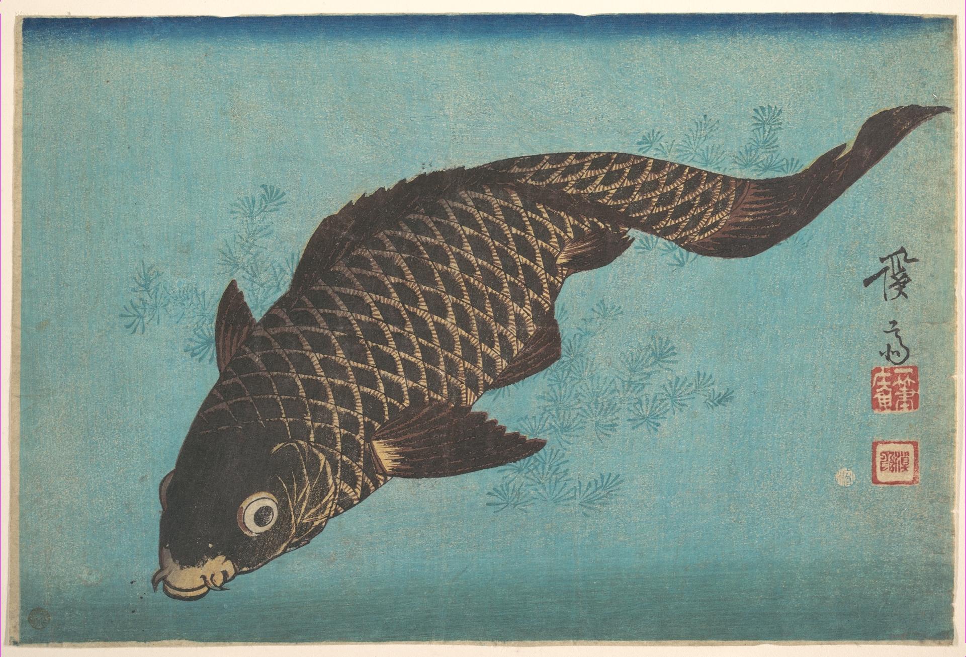Keisai eisen koi metropolitan museum of art ukiyo e for Koi fish culture