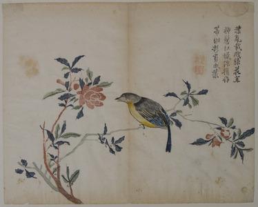 Unknown: Bird on a Flowering Branch - Metropolitan Museum of Art