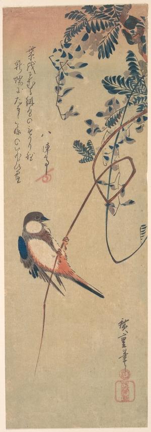 Utagawa Hiroshige: Bird and Wisteria - Metropolitan Museum of Art