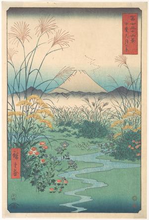 Utagawa Hiroshige: Kai, Otsuki no Hara - Metropolitan Museum of Art