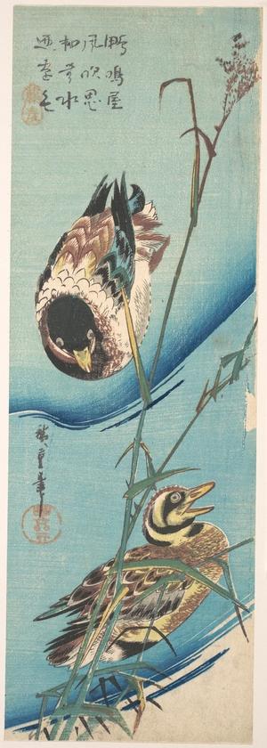 歌川広重: Mallard Ducks and Snow-covered Reeds - メトロポリタン美術館