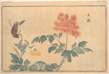 Keisai: Chinese Oriole and Peonies - Metropolitan Museum of Art