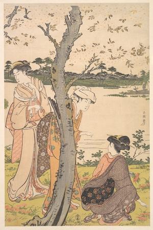 勝川春潮: Gathering Young Flowers - メトロポリタン美術館
