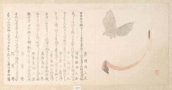 窪俊満: Flower-Vase of Horn and a Butterfly - メトロポリタン美術館