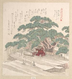 窪俊満: Shrine Under a Big Pine Tree - メトロポリタン美術館