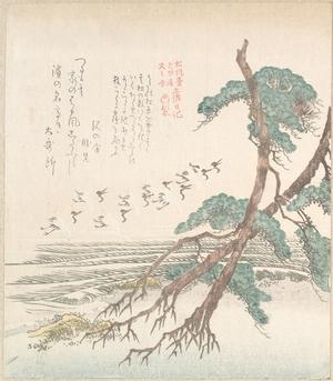 窪俊満: Sea-Side Landscape with Pine Trees and Flying Cranes - メトロポリタン美術館