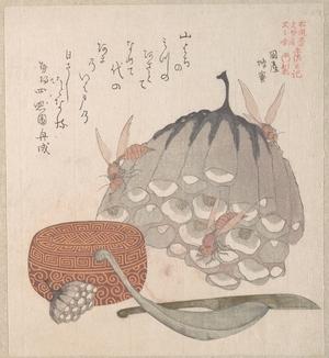 窪俊満: Hives with Wasps, and a Box with a Spoon for Honey - メトロポリタン美術館