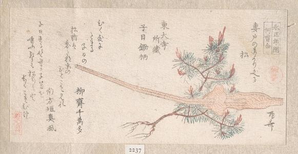柳々居辰斎: Young Pine Tree and Handle of a Plow - メトロポリタン美術館