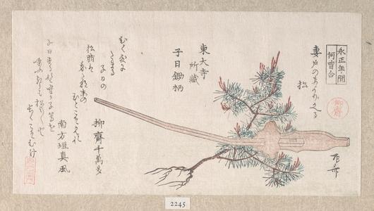 柳々居辰斎: Young Pine Tree and the Handle of a Plow - メトロポリタン美術館