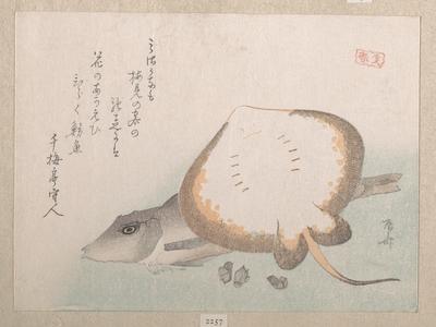 Ryuryukyo Shinsai: Stingray and Gurnard - Metropolitan Museum of Art