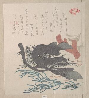 窪俊満: Various Seaweed - メトロポリタン美術館