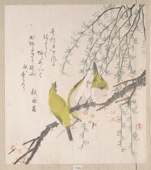 窪俊満: Branches of Plum Tree and Willow with Japanese White-Eyes - メトロポリタン美術館