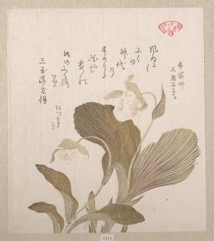 窪俊満: Hotei Flowers - メトロポリタン美術館