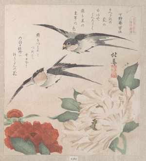 Teisai Hokuba: Swallows and Peonies - Metropolitan Museum of Art