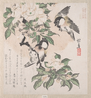 Teisai Hokuba: Marsh-tits and Aronia Flowers - Metropolitan Museum of Art
