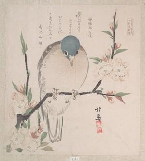 Teisai Hokuba: Dove and Peach Flowers - Metropolitan Museum of Art