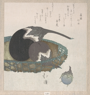 Totoya Hokkei: Eggplants in a Basket - Metropolitan Museum of Art