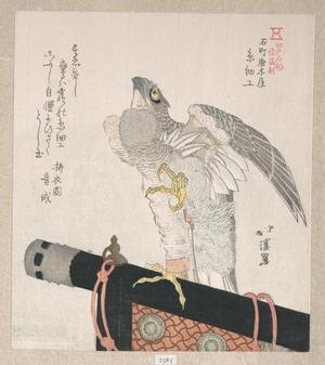 Totoya Hokkei: Hawk Made of Silk; Specialities of Karakiya in Kokucho - Metropolitan Museum of Art