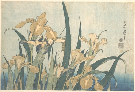 Katsushika Hokusai: Grasshopper and Iris - Metropolitan Museum of Art