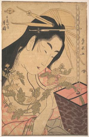 一楽亭栄水: The Courtesan Tsukioka of Hyôgoya - メトロポリタン美術館