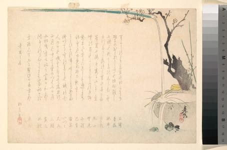 Shibata Zeshin: Surimono - Metropolitan Museum of Art