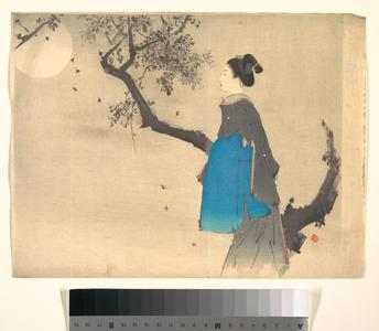 無款: Profile View of a Woman Strolling in the Moonlight - メトロポリタン美術館