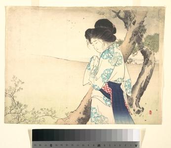 Mizuno Toshikata: - Metropolitan Museum of Art