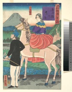 Utagawa Yoshitora: Twilight, Looking at Wild Geese Flying Down Toward Yoshida Bridge - Metropolitan Museum of Art