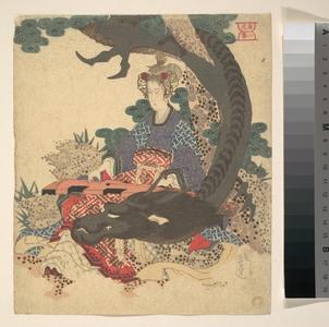 屋島岳亭: Benzaiten ni Ryu - メトロポリタン美術館