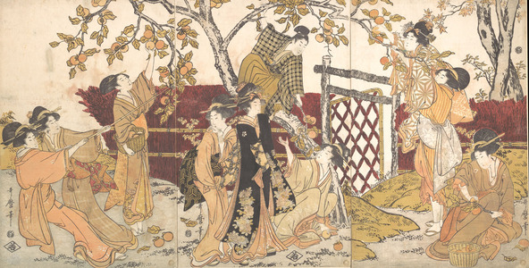 Kitagawa Utamaro: Picking Persimmons - Metropolitan Museum of Art