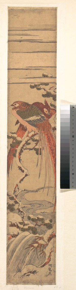 Isoda Koryusai: Pheasants in the Snow on a Pine Branch over a Waterfall - Metropolitan Museum of Art
